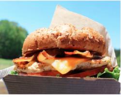 Chick-fil-A – Chicken Sandwich