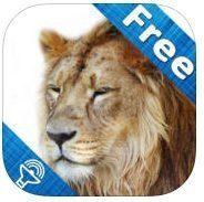 Free App For Kids – Kids Zoo