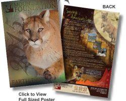Free Mountain Lion Poster