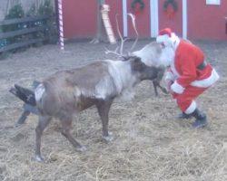 Santa's Live Camera Feed